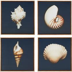 Ocean Seashells 4-pc. Wall Art Set