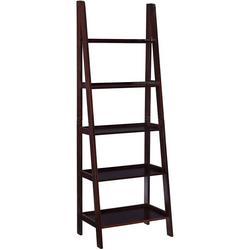 Adara Ladder Bookshelf