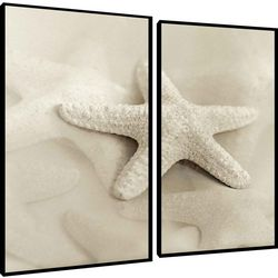 PTM Images Starfish Diptych Framed Wall Art Set