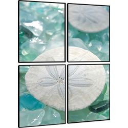 PTM Images Sand Dollar Quadriptych Wall Art Set