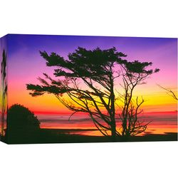PTM Images Olympic Beach Canvas Wall Art