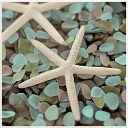Starfish Sea Glass Wall Art