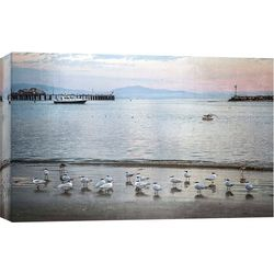 PTM Images Harbor Birds Canvas Wall Art