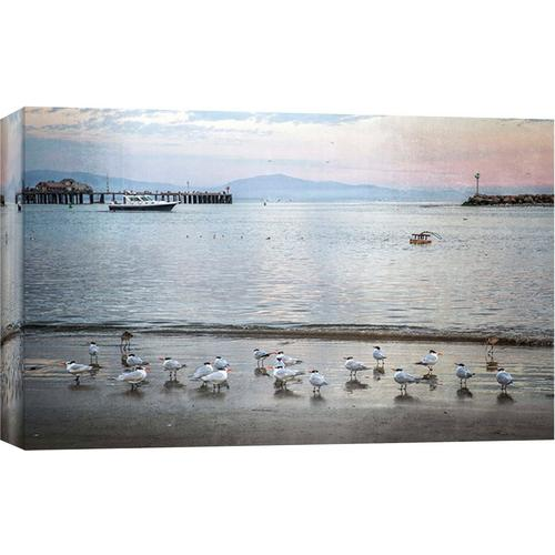 Ptm Images Harbor Birds Canvas Wall Art Bealls Florida