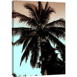 Tropical Shadows Canvas Wall Art