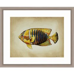 PTM Images Tropical Fish II Framed Wall Art