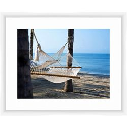 PTM Images Hammock Framed Wall Art