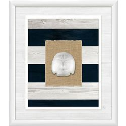 Coastal Shells Collection II Wall Art
