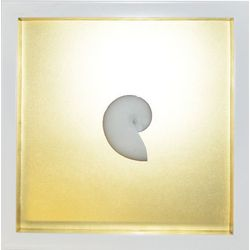 Large Gold Nautilus Shadowbox Wall Art