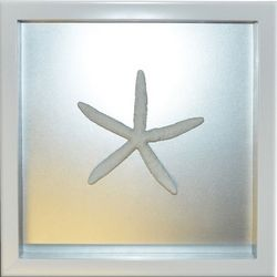 PTM Images Chrome Starfish Shadowbox Wall Art