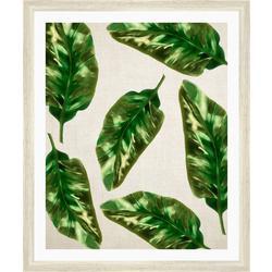 Paradise Leaves I Framed Wall Art