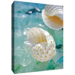 Crystal Shells I Canvas Wall Art