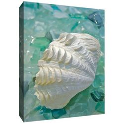 PTM Images Crystal Oyster Canvas Wall Art