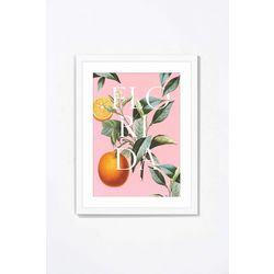 PTM Images Florida Oranges II Framed Wall Art