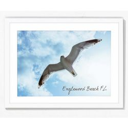 PTM Images Bird Flying Over Englewood Beach Framed Wall Art
