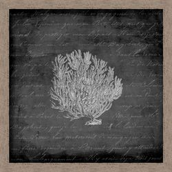 PTM Images Black & White Sea Fan Wall Art