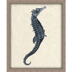 PTM Images Seahorse Framed Wall Art