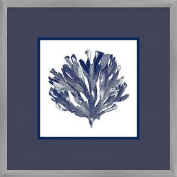 Navy Coral II Framed Wall Art