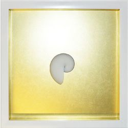 PTM Images Small Gold Nautilus Shadowbox Wall Art