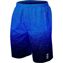 TYR Mens Lagoon Lakefront Land to Water Shorts