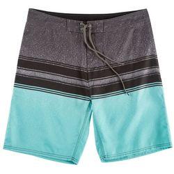 Burnside Mens Aqua Splash Boardshorts