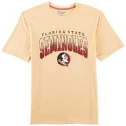 Florida State Mens Heathered Arch T-Shirt by Champion