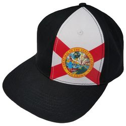 FloGrown Mens Florida Flag Panel Snapback Hat