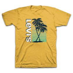 Levi's Mens Fuji Graphic T-Shirt