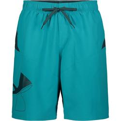 Mens Big Icon Swim Trunks