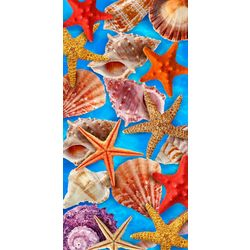 Water Shells Beach Towel
