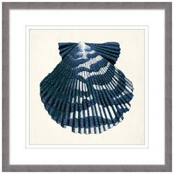 Vintage Shell I Framed Wall Art