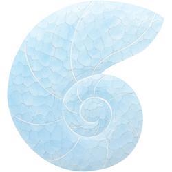 Nautilus Shell Wood Wall Art