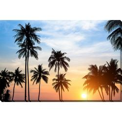Palm Silhouette Canvas Wall Art