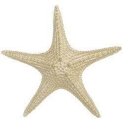 Sagebrook Home 13'' Starfish Figurine
