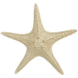 13'' Starfish Figurine