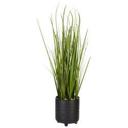 Flora Bunda 28'' Onion Grass Decor