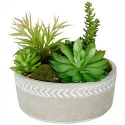 Siena Floral 7.5'' Succulent Pot Decor