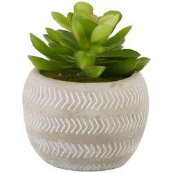 Siena Floral 4.5'' Succulent Pot Decor