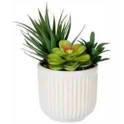 Siena Floral 10'' Succulent Pot Decor