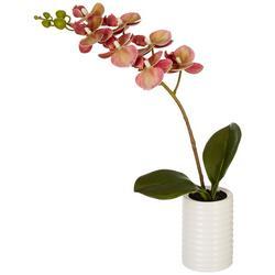 12'' Orchid Plant Decor