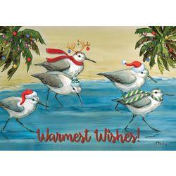 Holiday Shorebirds Greeting Cards