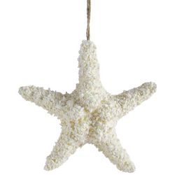 Brighten the Season Sandy Starfish Ornament