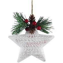Brighten the Season Star & Pine Needles Ornament