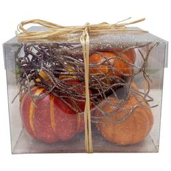Brighten the Season Pumpkin & Starfish Decor Box