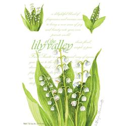 Lily Of The Vallley Sachet