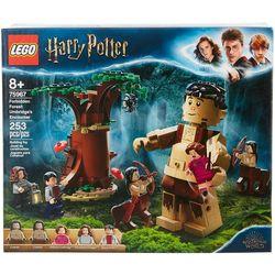 Harry Potter Forbidden Forest Umbridge's Encounter