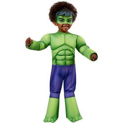 Toddler Boys Deluxe Hulk Costume