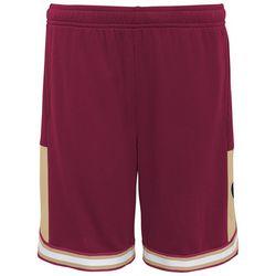 Florida State Big Boys Logo Stripe Hem Shorts By Gen2