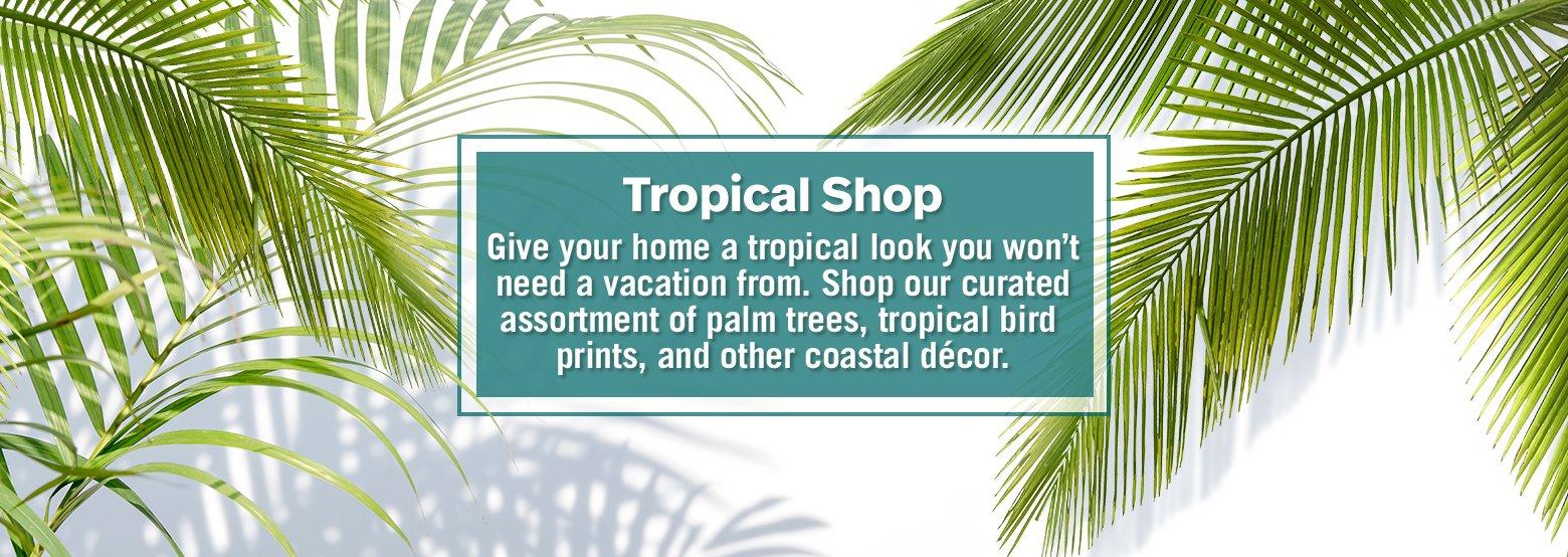 Tropical Shop - Give your home a tropical shop look you won't need a vacation from. Shop our curated assortment of palm trees, tropical bird prints, and other coastal decor.
